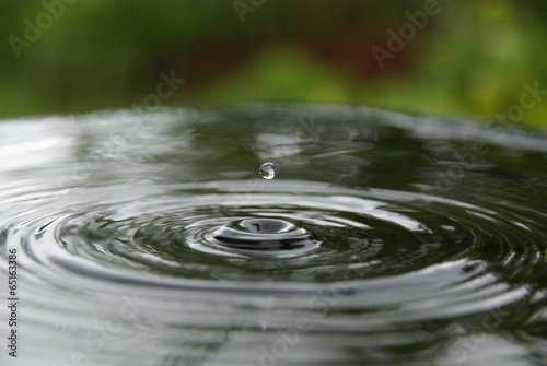 drop © arris_