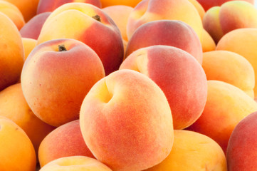 beautiful background of apricot