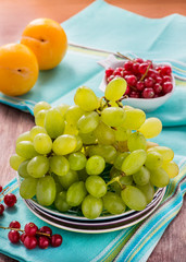 Fresh green grapes, yellow plums and red currants