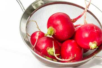 fresh clean radishes