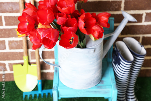 Papiers peints Tulip Composition of colorful tulips in watering can and rain boots