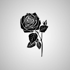 rose. Vector illustration.