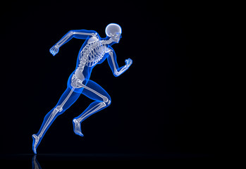 Running skeleton. Contains clipping path.