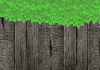 Holz Schild mit grünen Blättern