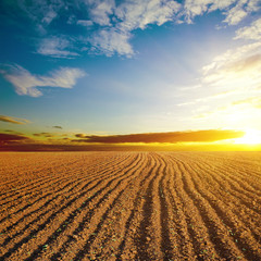 cloudy sunset and plowed field