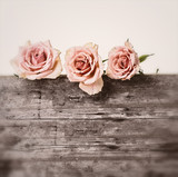 Rosen antik Hintergrund