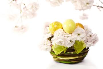 Osterei im Kirschblütennest