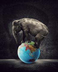 elephant asia globe