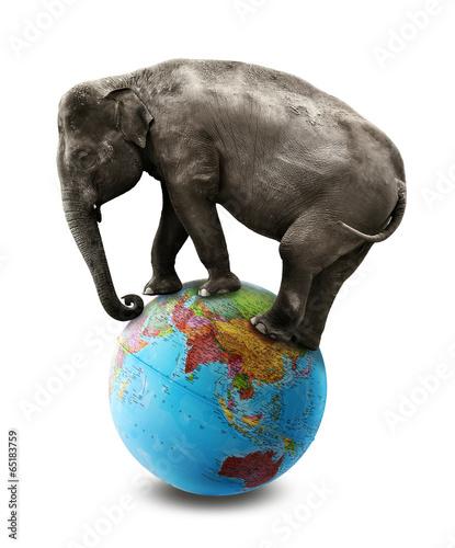 elephant asia world globe