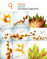Vector autumn leaves design collection