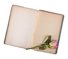 Dry rose and old book isolated on white