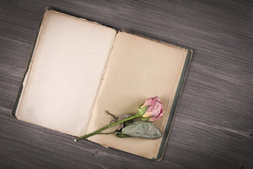 Dry rose and old book on wooden background