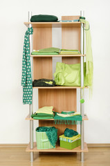 Tidy wardrobe with green clothes nicely arranged on a shelf.