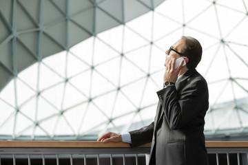 businessman in formal wear talking on phone