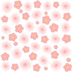 Rosa Blumen auf weiß