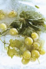 Gefrorene Trauben im Eisblock