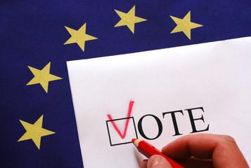 euro vote flag
