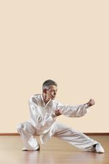 Kung Fu,Fanziquan,Qigu shi,Man praktiziert Kung-Fu