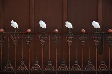 白鷺のオブジェ