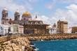 Cadiz Cathedral and Atlantic Ocean - 65202920
