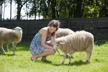 Deutschland,Bayern, die Fütterung Schafe,Portrait