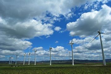 Parque eólico, molinos, energía eólica, Cádiz