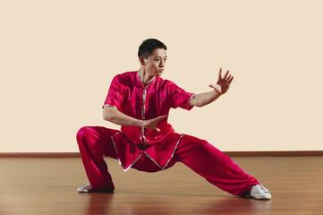Kung Fu,Baguazhang,Ban mabu tuizhang,asiatische Kampfkünste