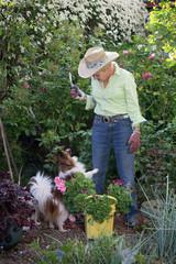 Garden Begging