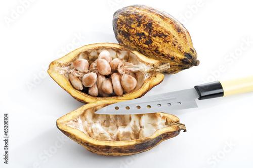 canvas print picture Cacao Pflanze, Schale , Bohnen und Messer