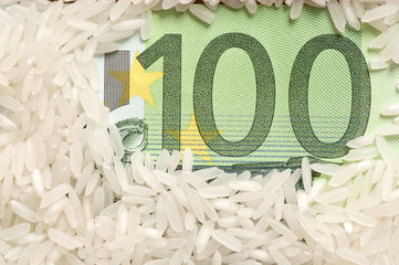 Rice grains on one hundred euro