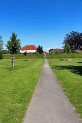 chemin traversant le parc