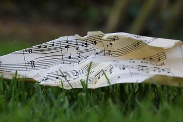 Musik Noten Gras