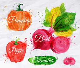 Vegetables watercolor corn, broccoli, chili, eggplantpumpkin,