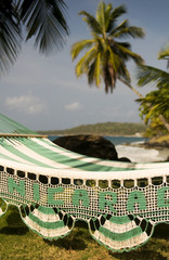hammock with palm coconut trees on Caribbean Sea at Casa-Canada