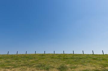 芝生と杭と青空