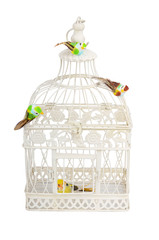 Beautiful carved cage with birds isolated