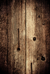 High resolution picture of natural wood  textured background  gr
