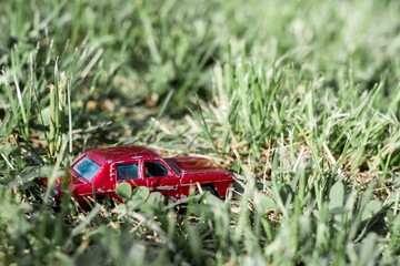 Car in the grass II