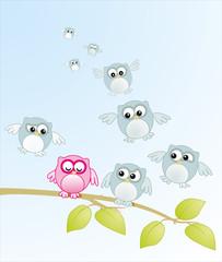 Owls flying