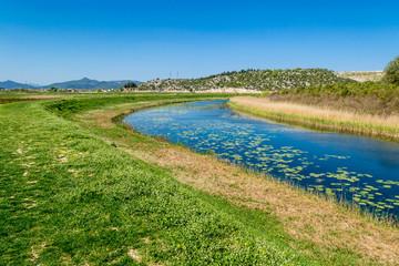 Peaceful creek flowing through the green plains