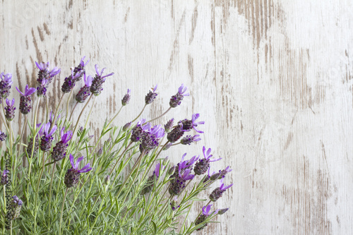 Lavender flowers on vintage wooden boards background