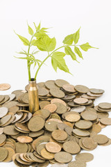 Monetary tree.