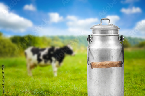 old aluminum milk can against cow pasture meadow - 65229361