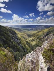 Tasmania Mt Victoria Valley Vertical