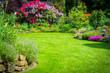 Garten mit Rhododendren - 65233901