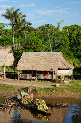 Amazon indian tribes in Brazil