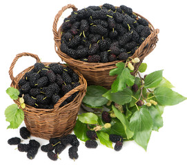 Two baskets with black mulberries and leaves