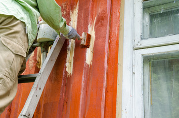 Painter man on ladder paint wooden house wall