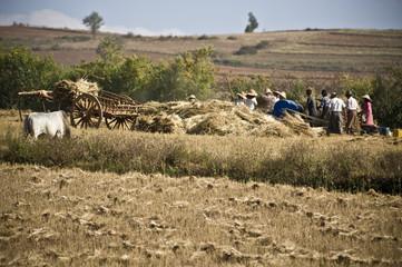 agriculteurs de l'Etat Shan, Myanmar