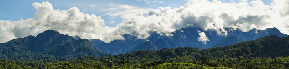 Landscape of cloudy ecuadorian cloudforest